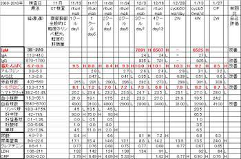 Chart20100127